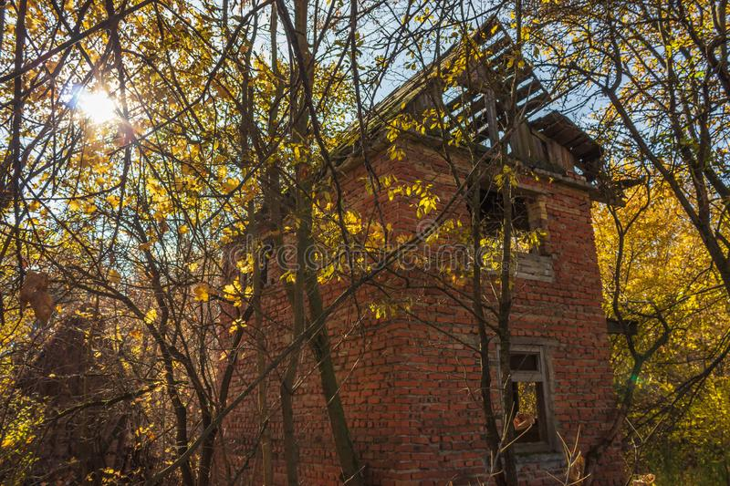 Abandoned buildings in golden autumn stock photo