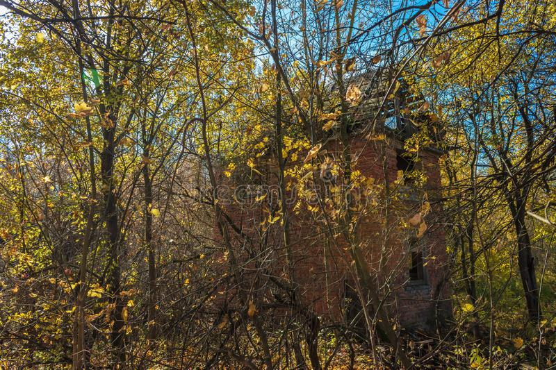 Abandoned buildings in golden autumn royalty free stock photo