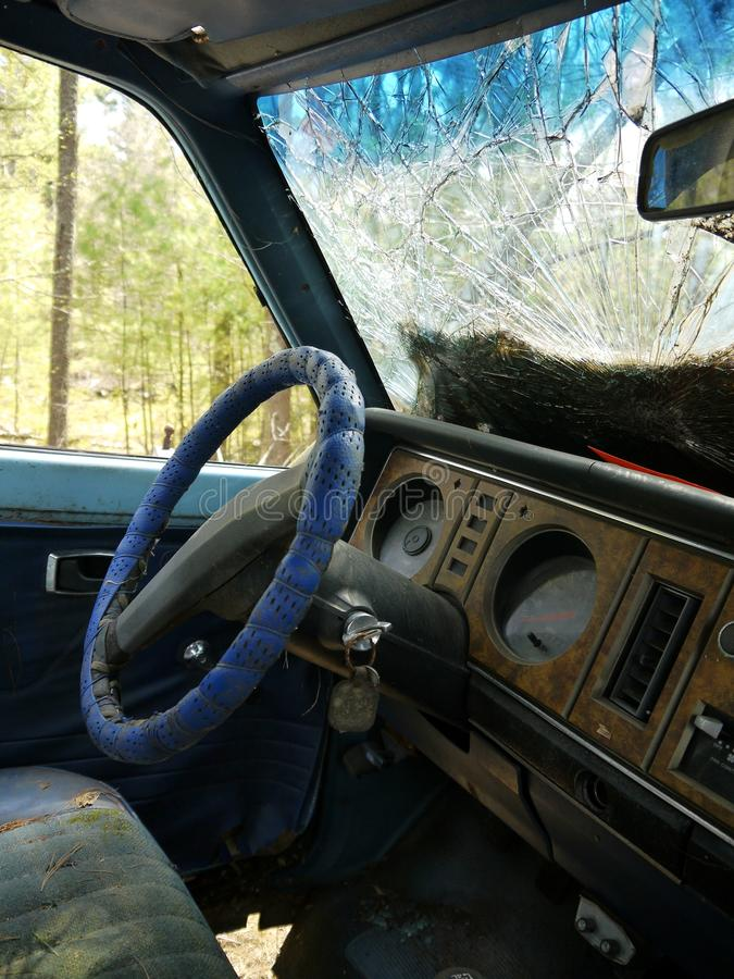 Download Abandoned car: interior stock image. Image of windscreen - 24566283