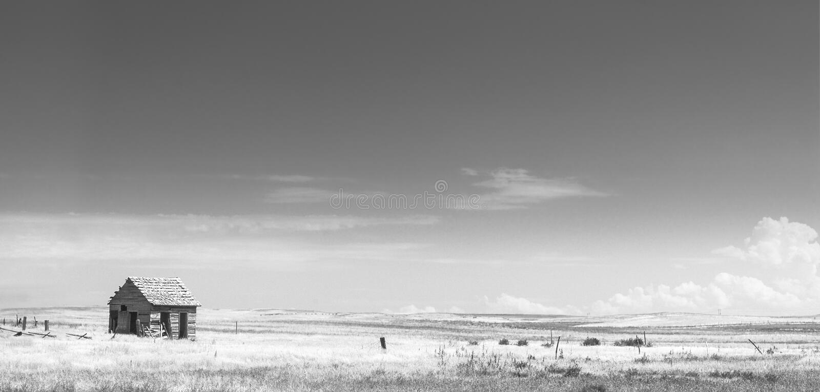 Abandoned colorado homestead on prairie royalty free stock photography