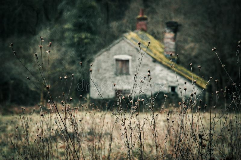 Abandoned cottage in a muted winter landscape stock photos