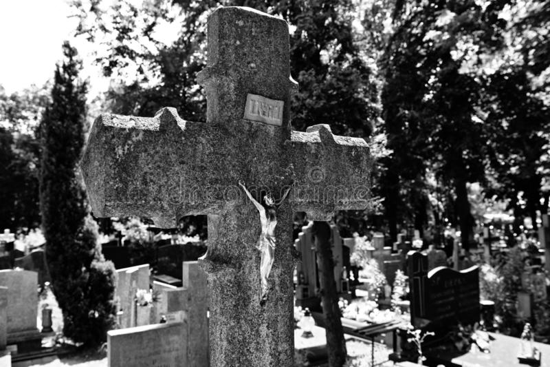 Abandoned cross on the cemetery royalty free stock photography