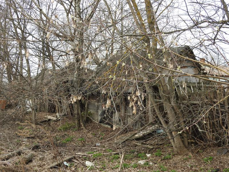 Abandoned destroyed wooden house in small russian village stock photo