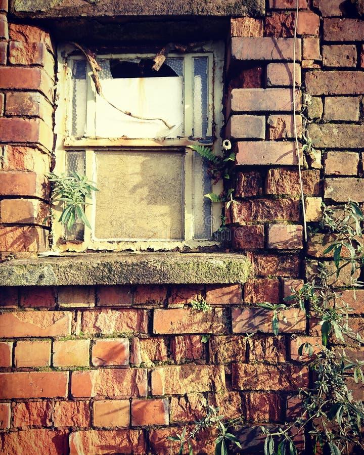 Abandoned factory window stock image