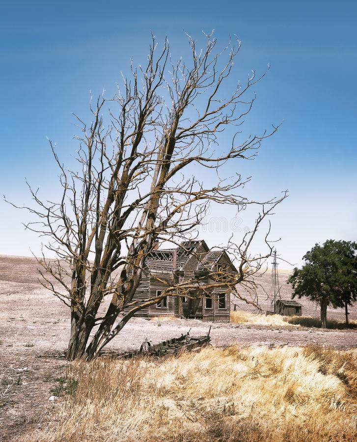 Abandoned Farm House In Oregon Field Stock Image