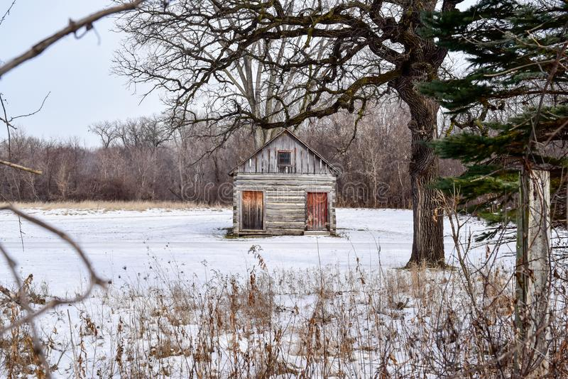 Abandoned farmhouse in weathered wood in a snowy field royalty free stock image
