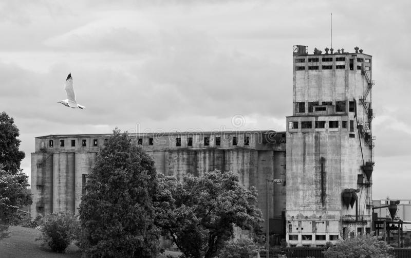 Abandoned Grain Elevator stock photos