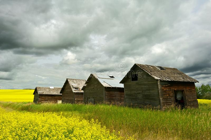Abandoned granaries and rainstorm stock images