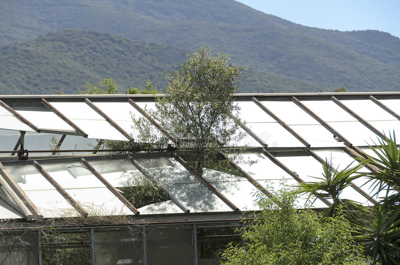 Download Abandoned greenhouse stock photo. Image of greenhouse - 30930904