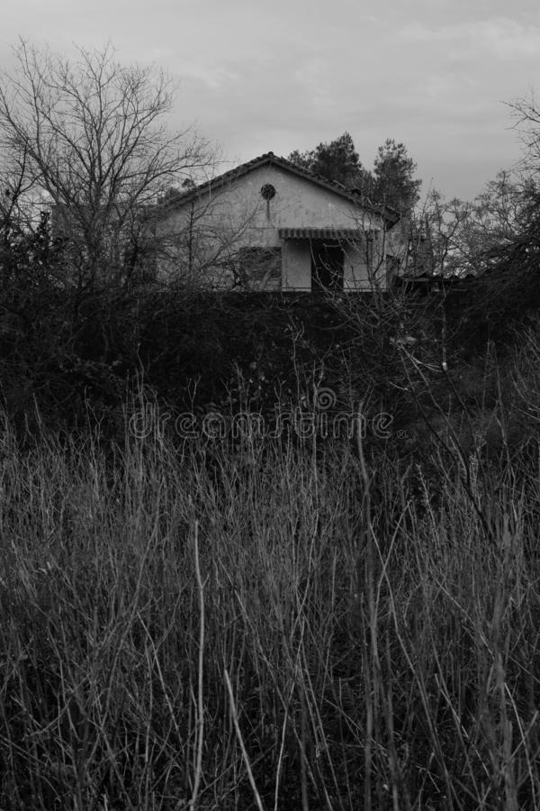 House in the woods and overgrown plants stock photography