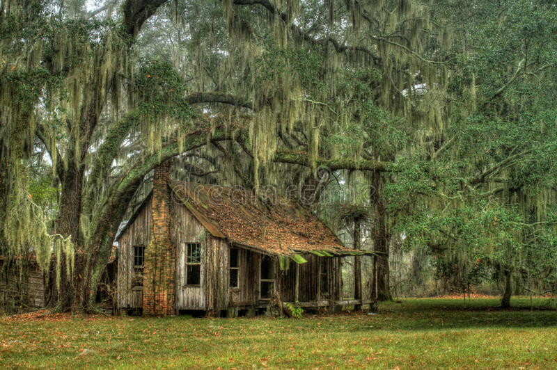 Download Abandoned Home stock photo. Image of home, antique, woods - 23914162