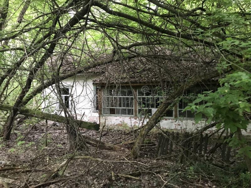 Abandoned house. Near Chernobyl Ukraine royalty free stock images