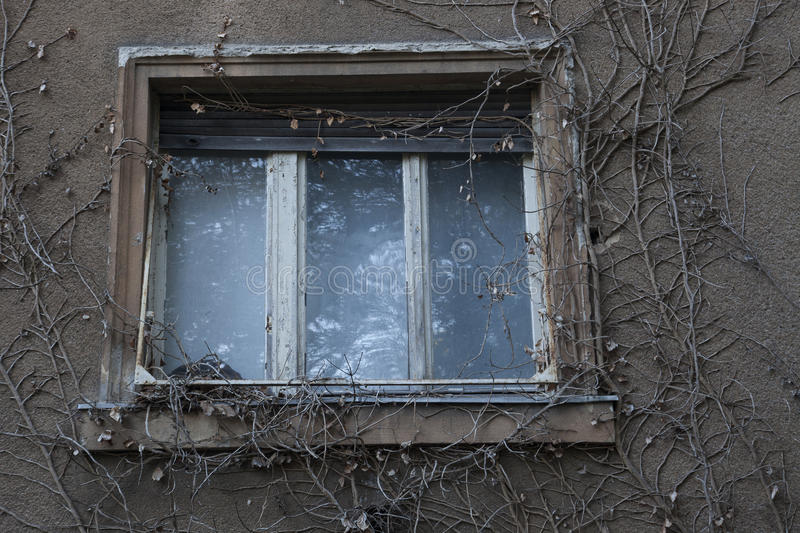 Download Abandoned house stock image. Image of credit, abandoned - 34709167