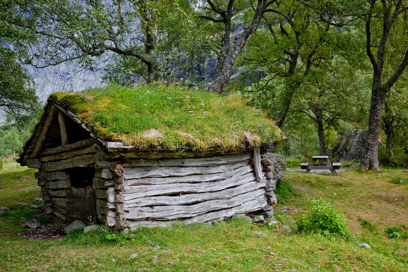 Abandoned hut in the forest royalty free stock photo