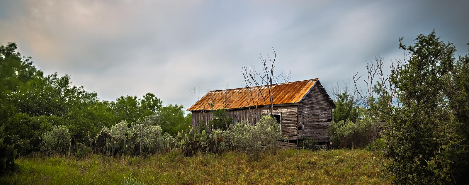 Abandoned log cabin house deep woods in texas royalty free stock photography