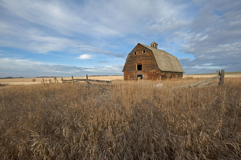 Abandoned old barn in grassy field in fall royalty free stock photo