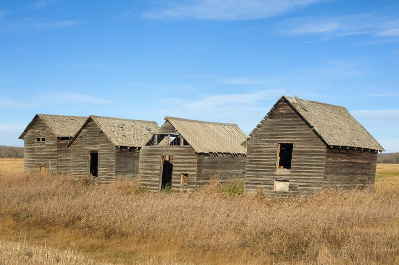 Abandoned old granaries in fall royalty free stock images