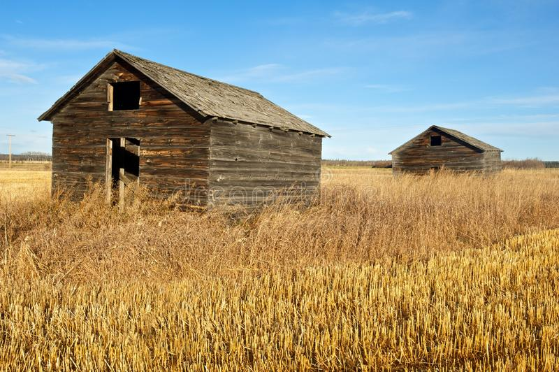 Abandoned old granaries in fall stock photography