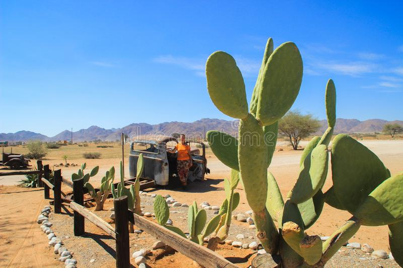 Abandoned old rusty cars in the desert of Namibia and a plump white tourist girl near the Namib-Naukluft National Park stock photography