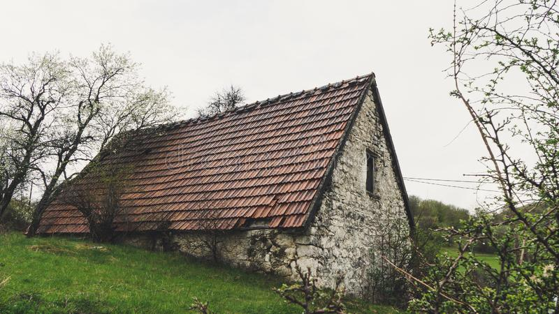 Abandoned old stone rural house. Village house. Derelict haunted stone house and dirt road in the woods. Tree white blossom. Historic, countryside, building stock photos