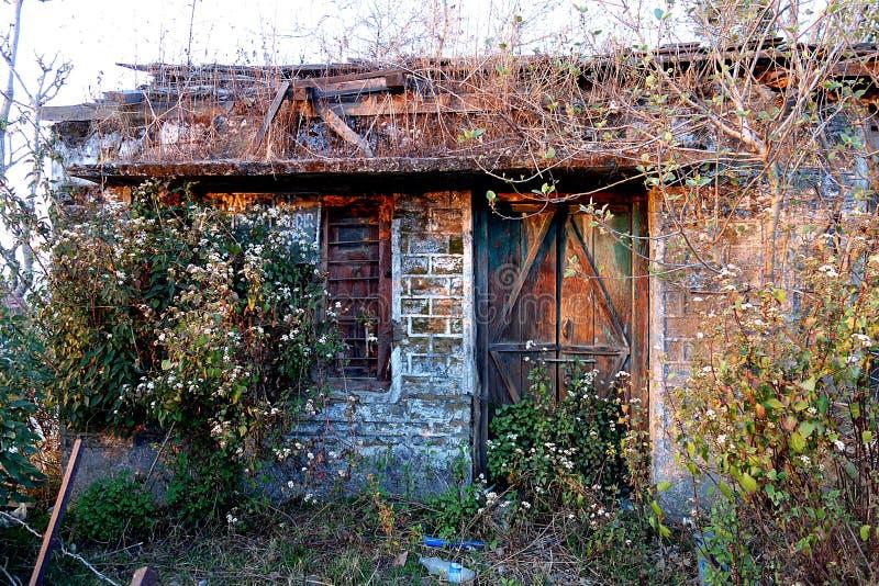 Abandoned Overgrown Magical Woodland Cottage royalty free stock photo