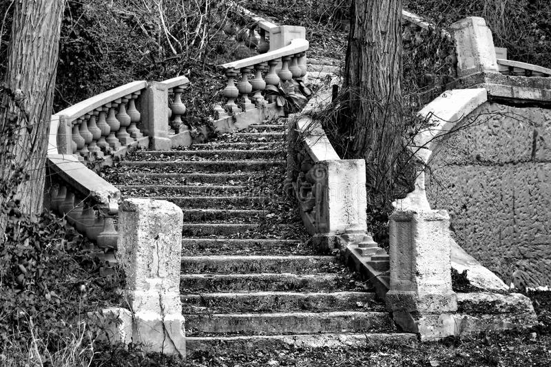 Abandoned and Overgrown Monumental Staircase Ruin. Abandoned monumental staircase ruin in an ornamental mansion garden overrun by overgrown vegetation and trees royalty free stock photography