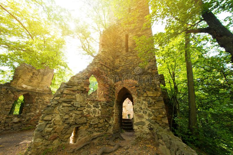 Abandoned place. Castle ruins in the green forest royalty free stock photos