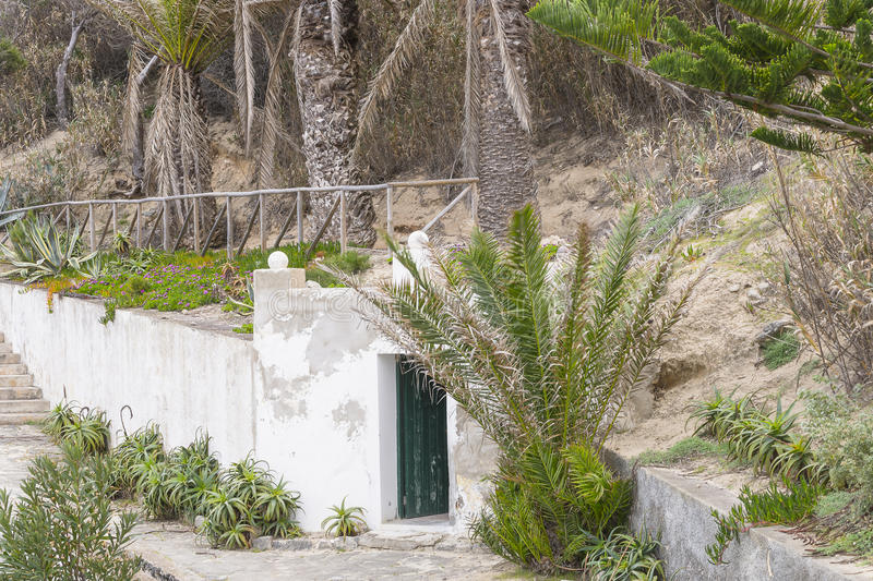 Abandoned place. Plants and door in abandoned place on the island Porto Santo . Small island not far of Madeira Island. Portugal, Europe royalty free stock photography