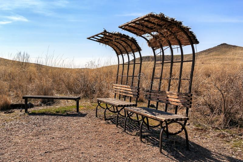 Abandoned places for recreation. the onset of wildlife royalty free stock images