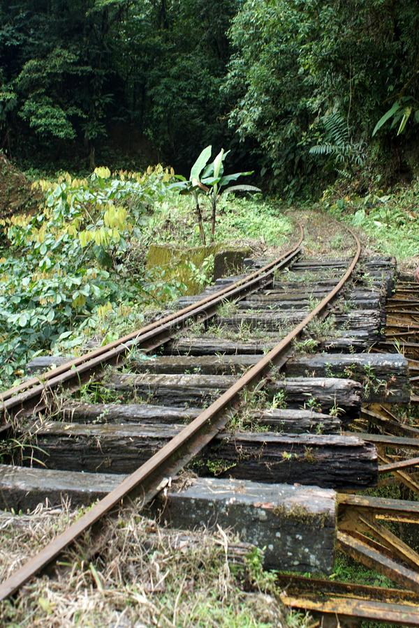 Abandoned rail bridge in the Cotacachi Cayapas Ecological Reserve. Bridge on an abandoned rail line in the Cotacachi Cayapas Ecological Reserve near Alto Tambo royalty free stock photos