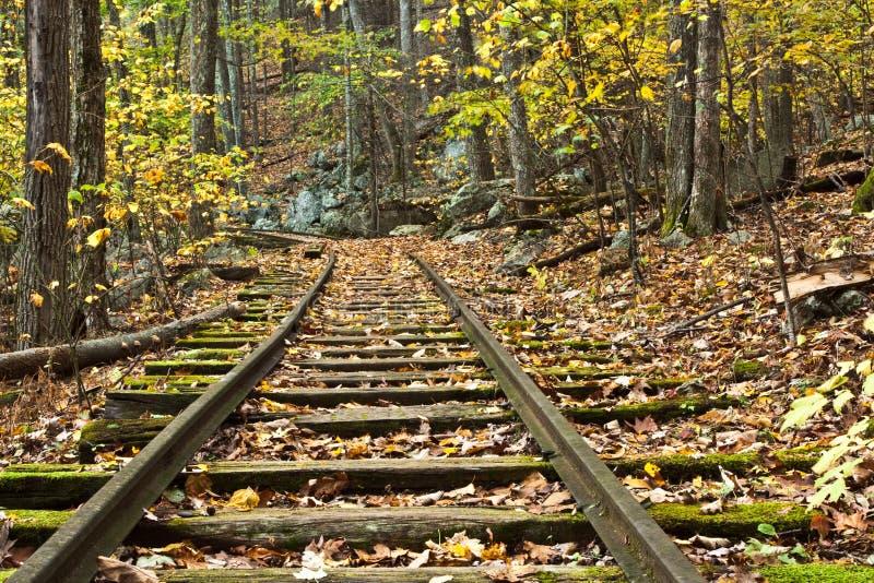 Abandoned Converging Railroad Tracks Stock Image - Image