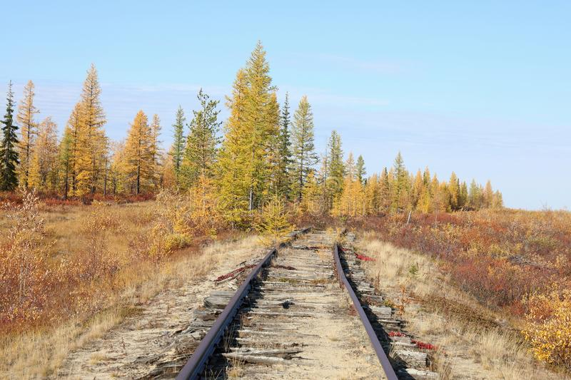 Abandoned railway in autumn in the North of Siberia. The old railway `Chum-Salekhard-Igarka`, built by prisoners of Stalin`s prison camps of Stalin`s 501-th royalty free stock photo
