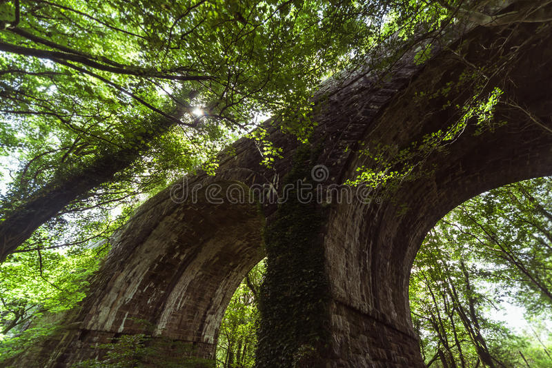 Abandoned railway bridge royalty free stock photography