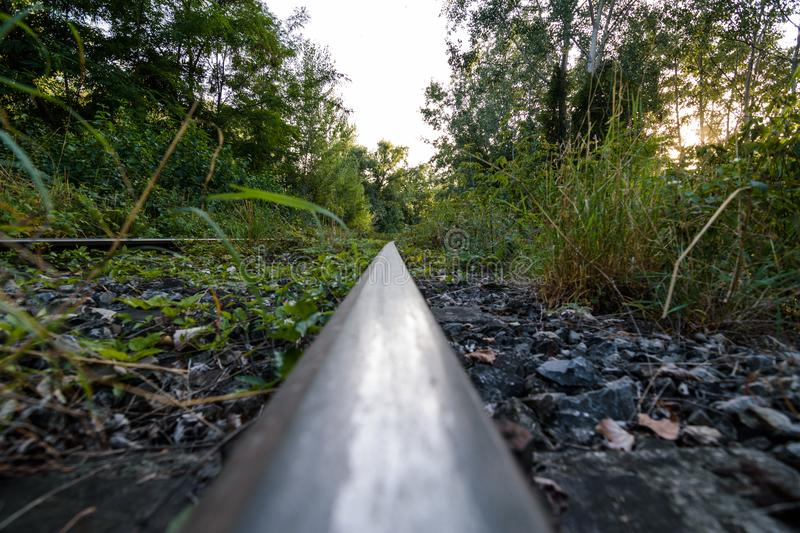 Abandoned railway in the forest. Abandoned railway in the middle of the forest which was taken back by nature royalty free stock photos