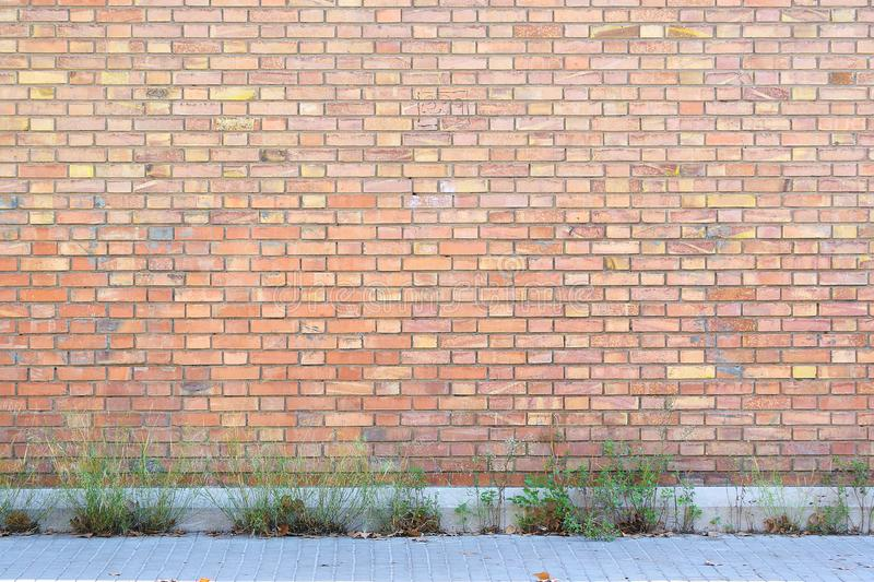 Download Abandoned Red Brick Wall With Some Plants And Sidewalk As A Street Background Stock
