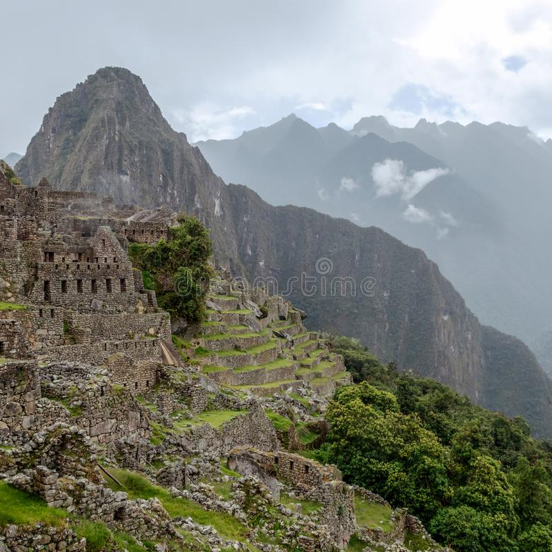 Abandoned ruins of Machu Picchu Incan citadel, the maze of terraces and walls rising out of the thick undergrowth, Peru stock images