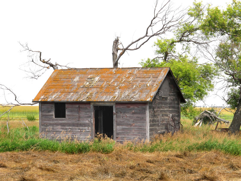 Abandoned shack in a prairie field royalty free stock photography