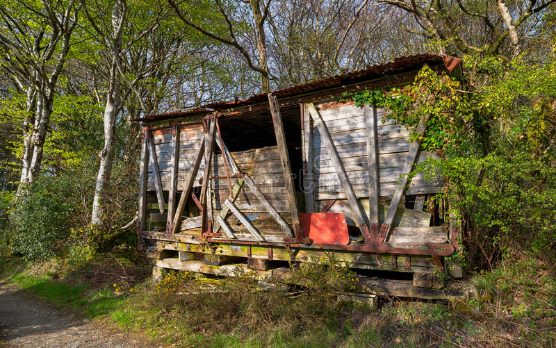 Abandoned Shack. A rickety derelict wooden shack in the woods stock photos