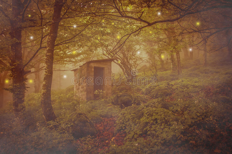 Abandoned spirits house in the magic forest royalty free stock photo