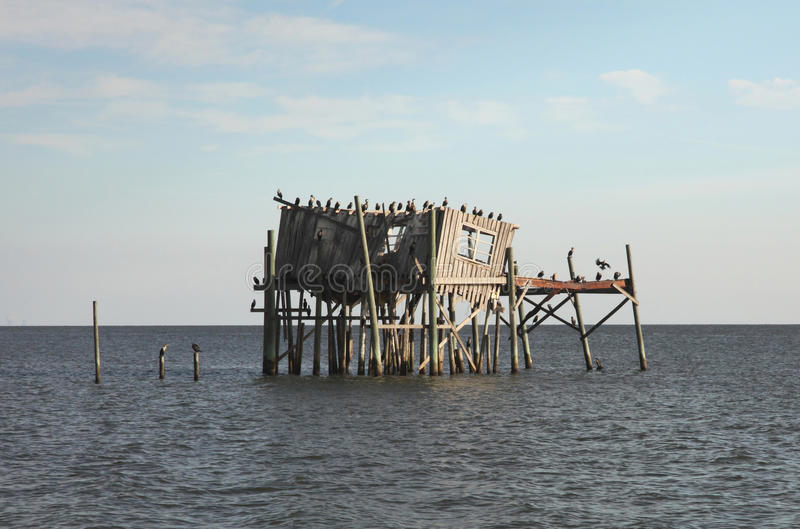 Download Abandoned Stilt House In Cedar Key, Florida Royalty Free Stock Photo - Image: 11878995