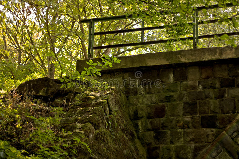 Abandoned stone bridge in deep forest stock photos
