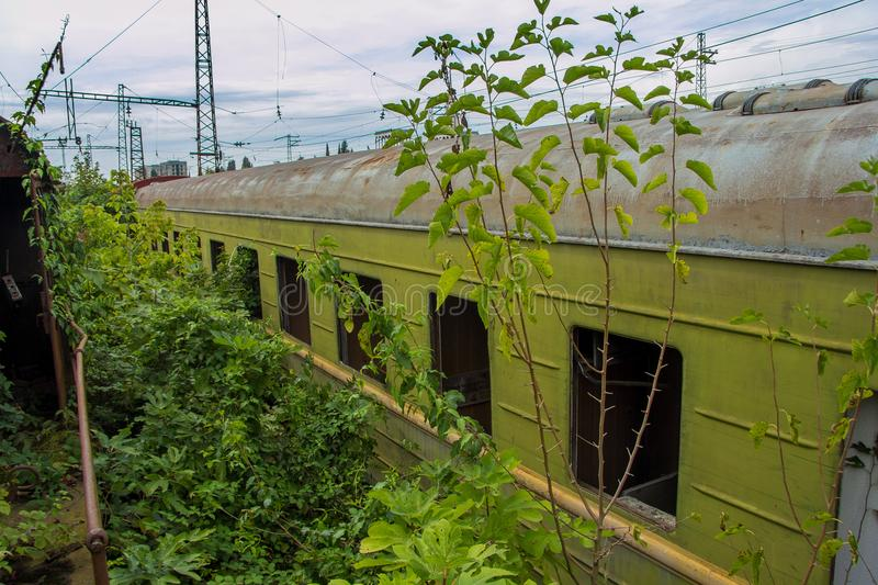 Abandoned train. Forgotten overgrown railway. Old rusty railway carriage royalty free stock images