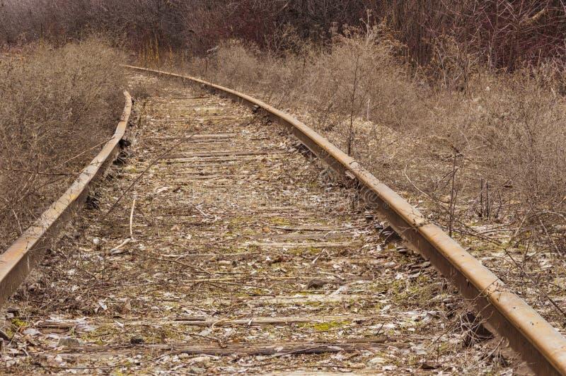 Abandoned Railroad stock image. Image of woods, rail