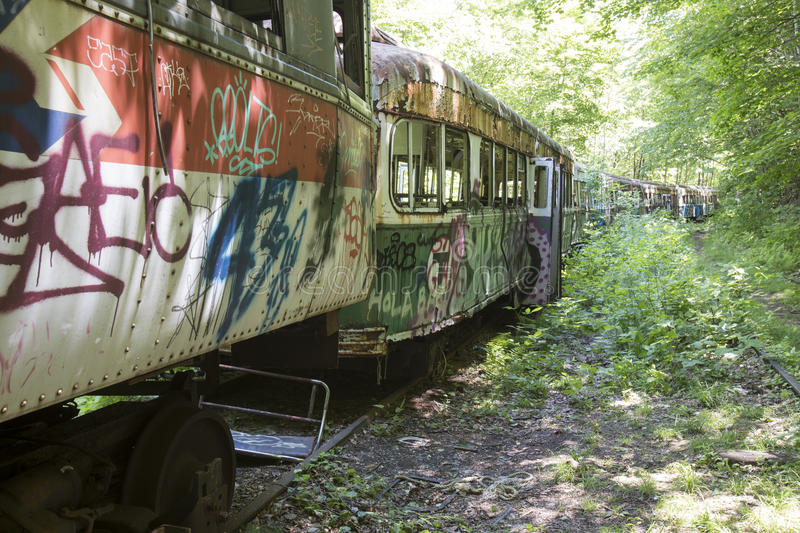 Abandoned trolley cars in woods stock image