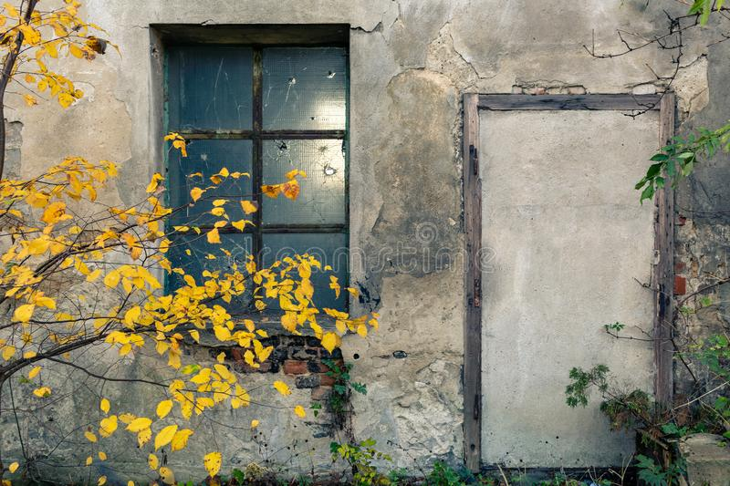 Abandoned warehouse entrance on concrete wall, facade with window and tree stock image