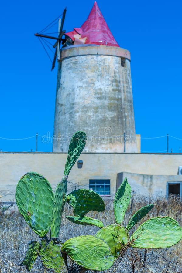 Abandoned windmill royalty free stock photography