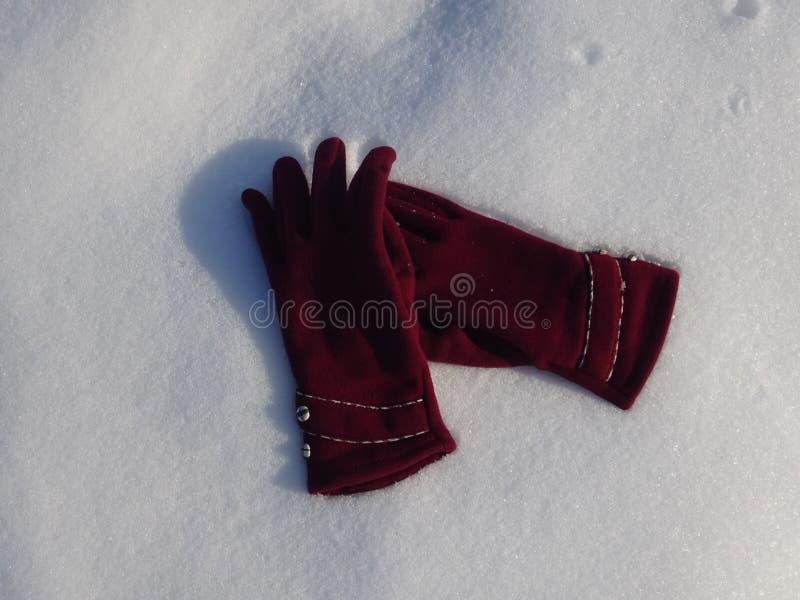 Abandonnez les gants colorés de main de dames dans la neige photo stock