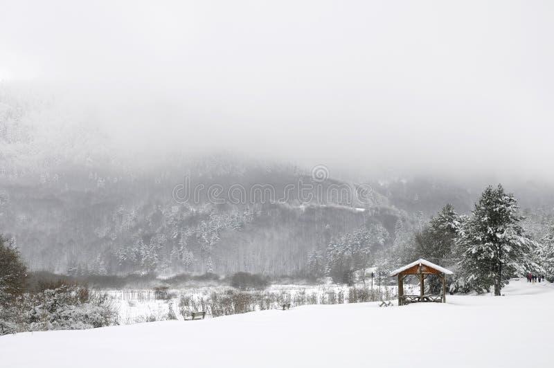 Abant See, Bolu - die Türkei lizenzfreies stockfoto