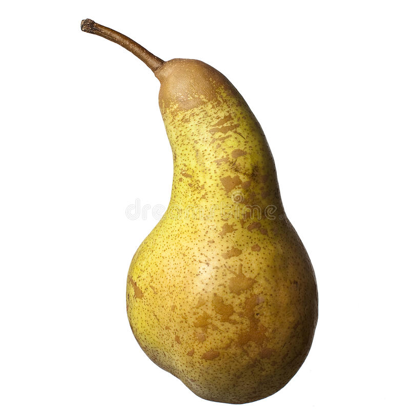 Abate Pear royalty free stock image