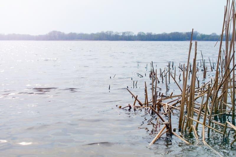 Abbagliamento sull'acqua fotografia stock
